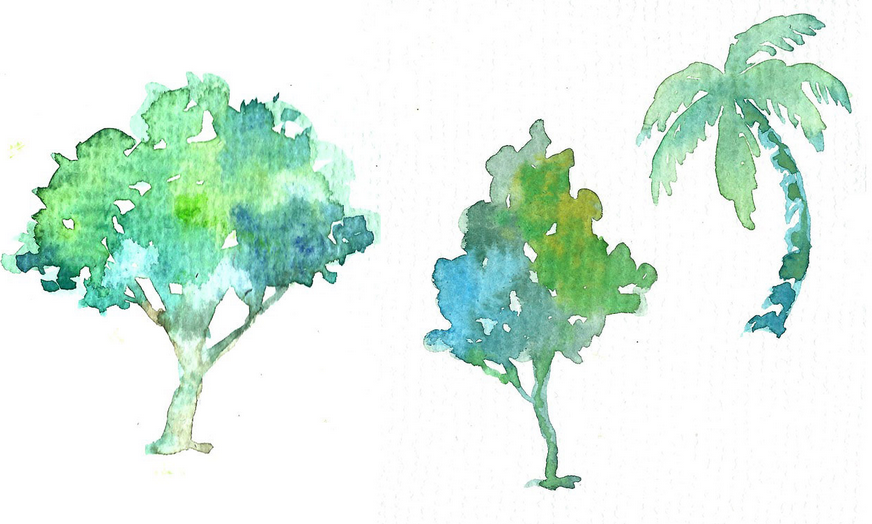 Selection of trees painted with watercolors.