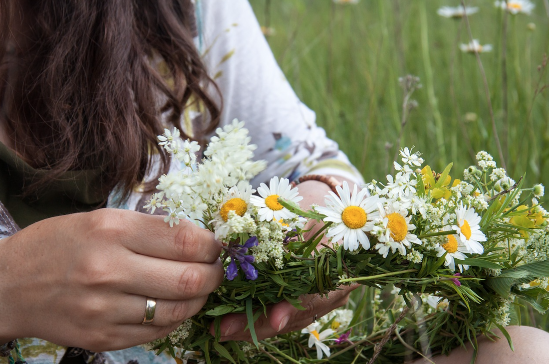 Woman's hands with wild flowers in meadow.